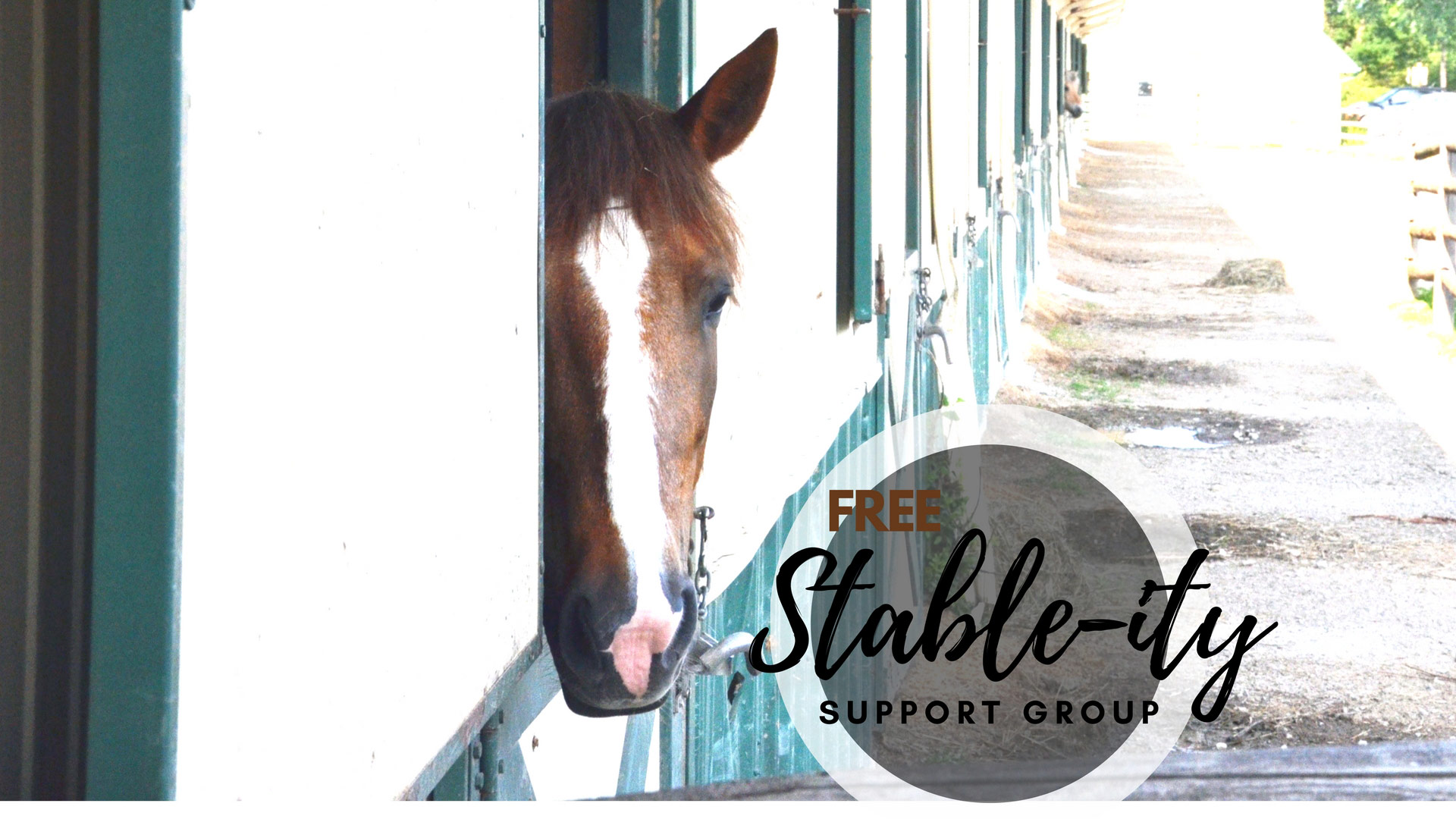 equine assisted therapy chicago