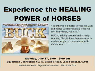 Healing Power of Horses