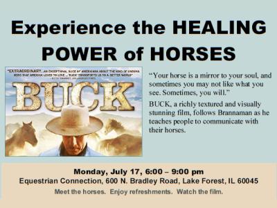 Healing Power of Horses