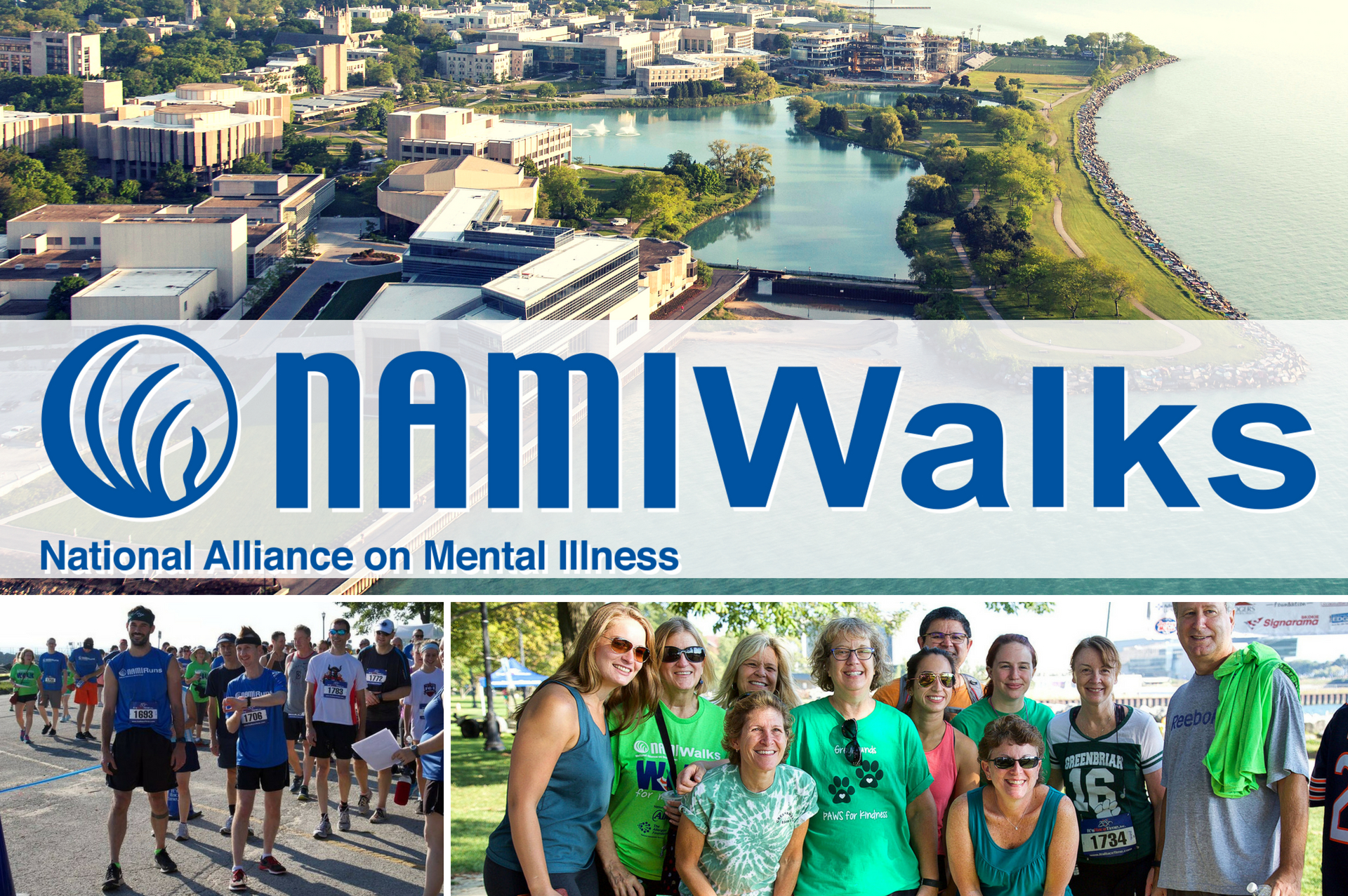 NAMI Walk Chicago