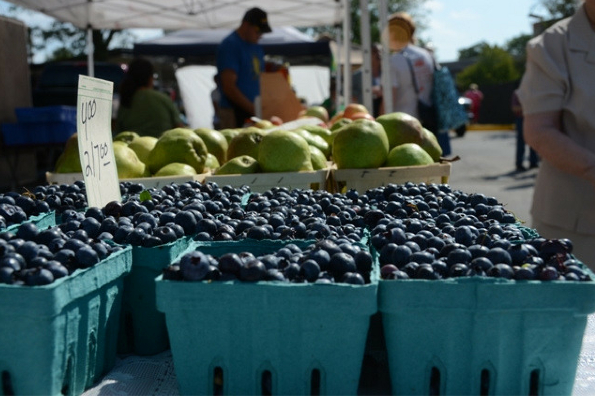 CORRECT FARMERS MARKET FREE Yoga on the Green | Downtown Skokie Outdoor Farmers' Market