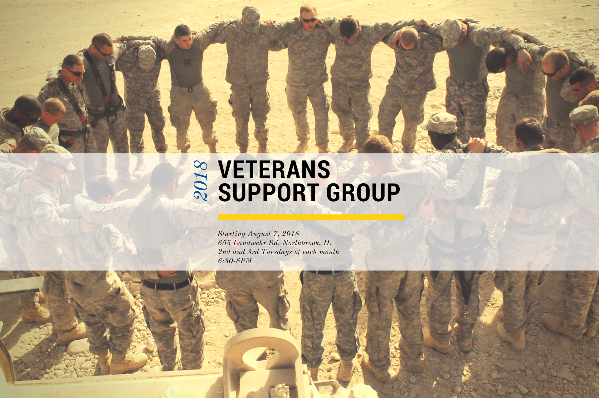 VETERANS SUPPORT GROUP CHICAGO