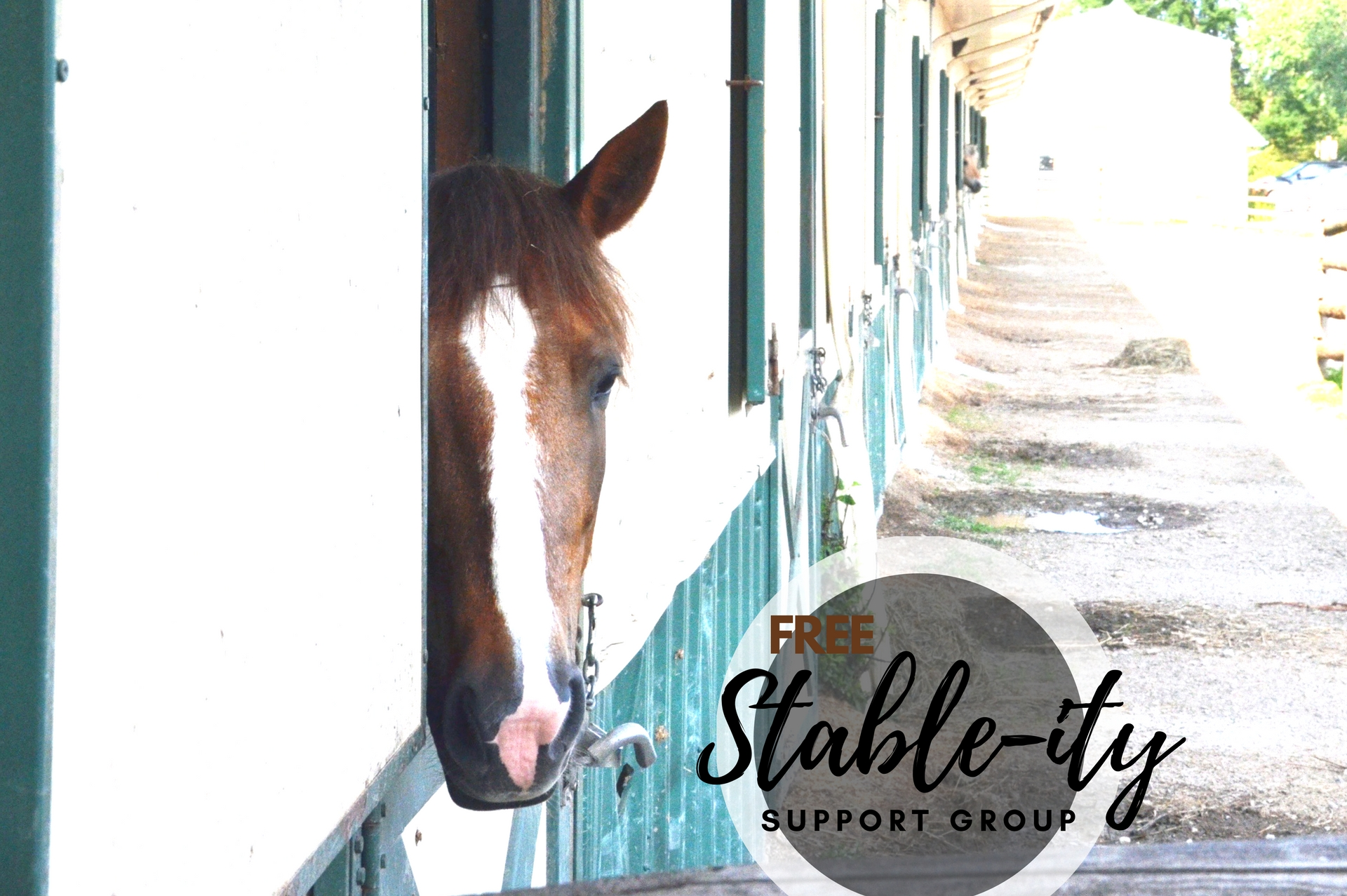 Stable-ity Support Group