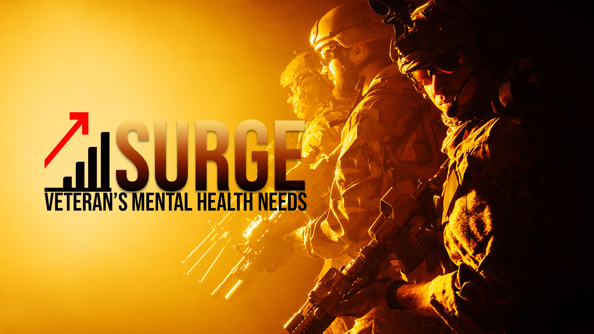 Surge in Veteran's Mental Health Needs