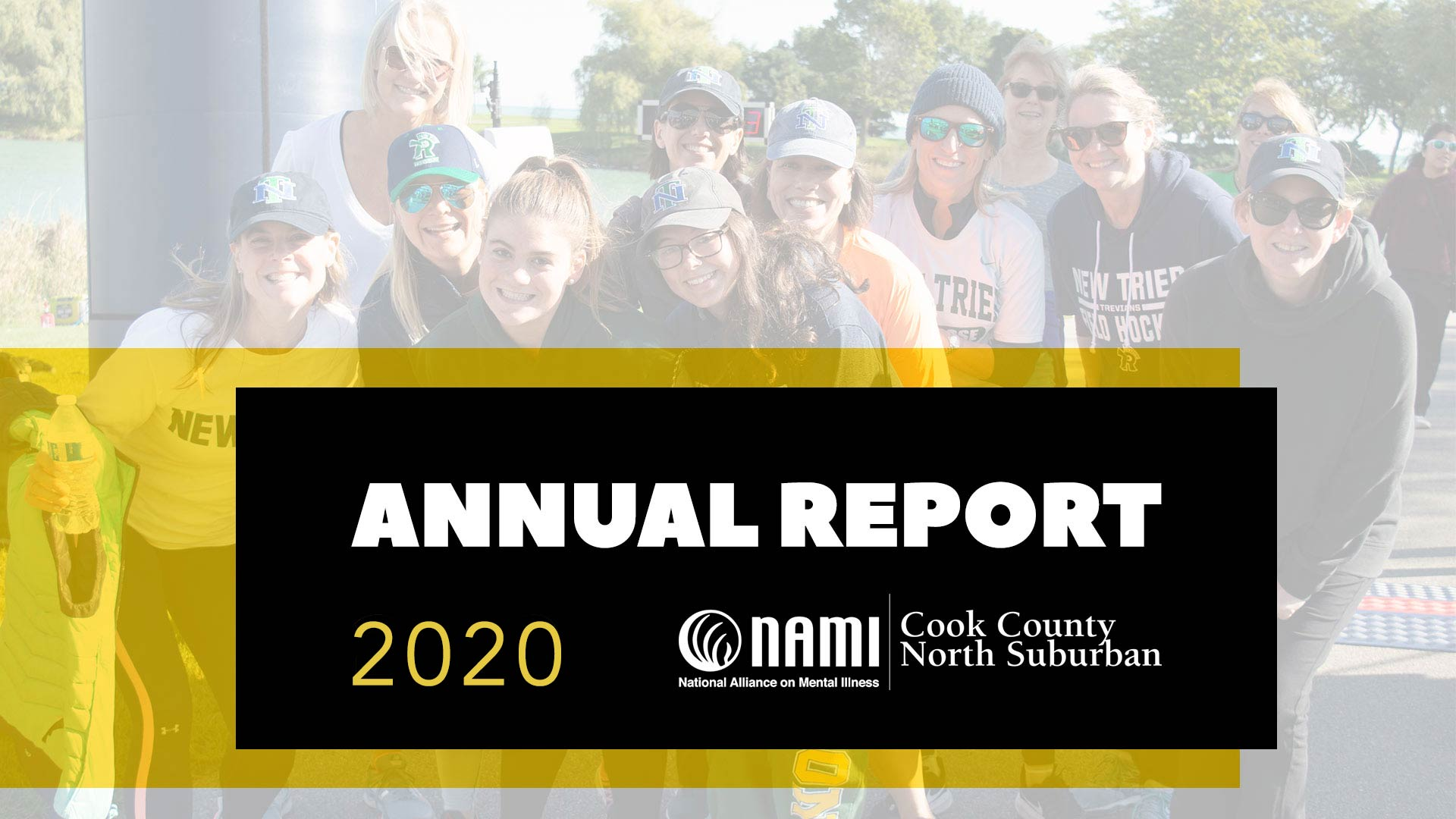 2020 NAMI ANNUAL Appeal letter report